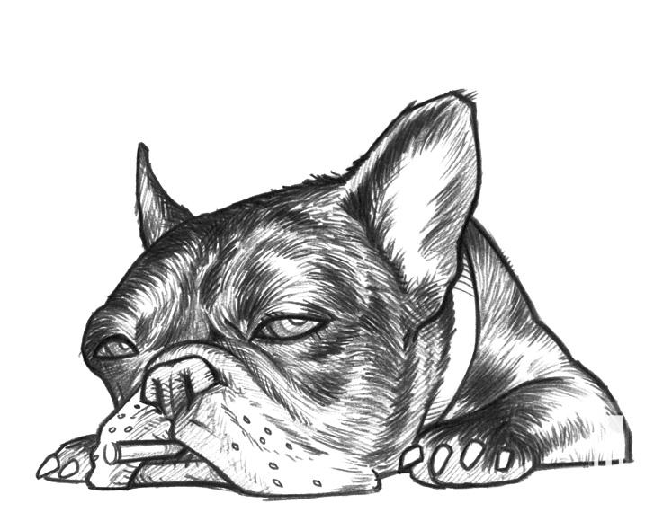 FUMS Poster Dog Line 2006