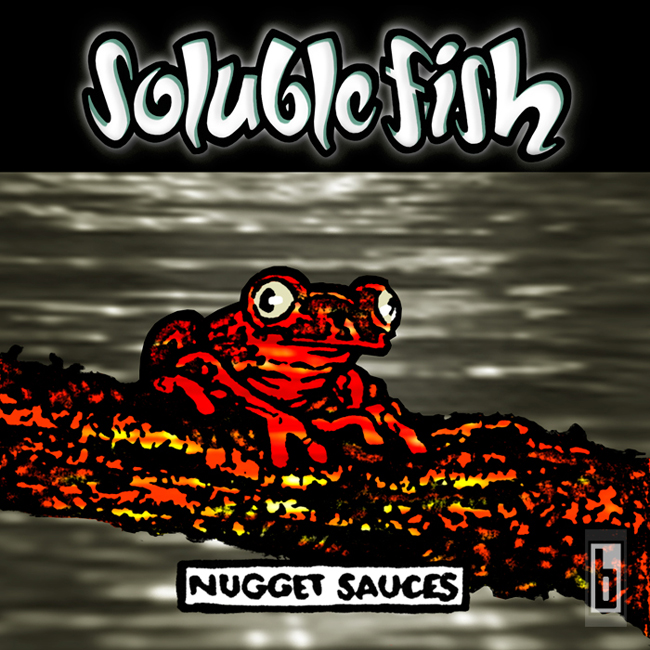 Soluble-Fish-Cover-1996-2006